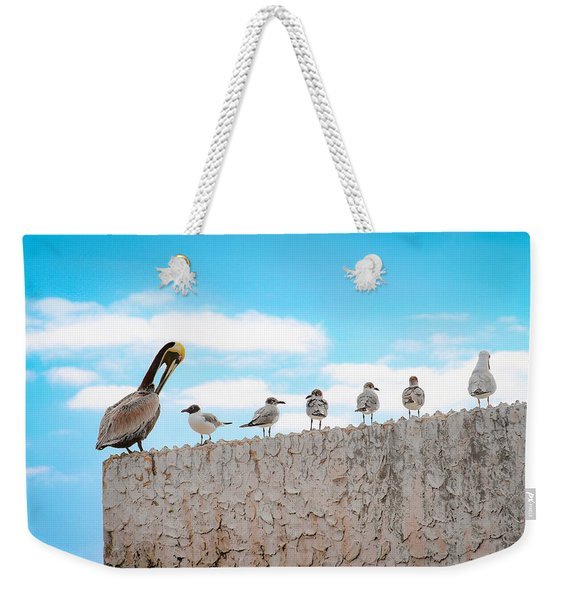 Birds Catching Up On News Weekender Tote Bag