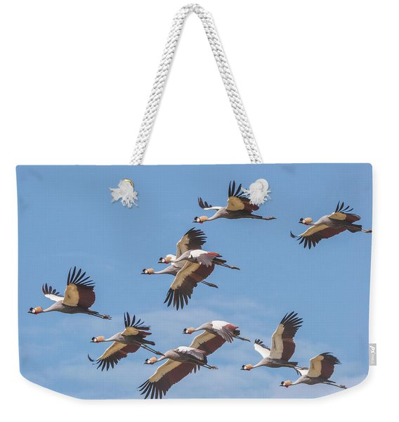 Birds Of The Same Feather. Weekender Tote Bag