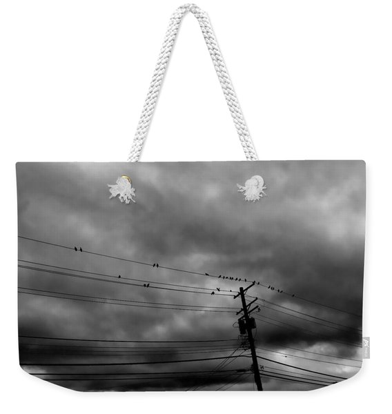 Birds On A Wire 2018 Weekender Tote Bag