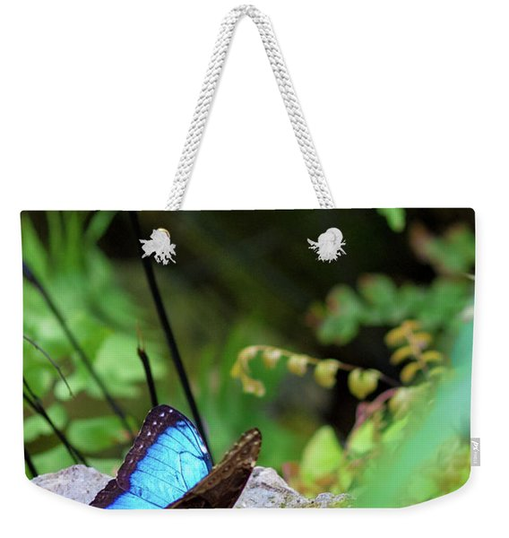 Black And Blue Butterfly Weekender Tote Bag