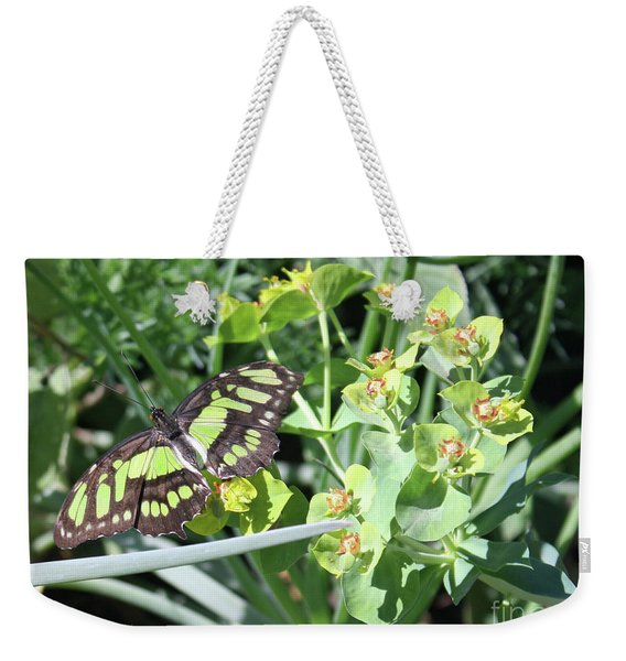 Black And Green Butterfly Weekender Tote Bag