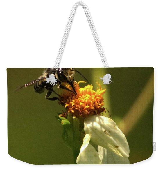 Black And Yellow Bee Pollinating Weekender Tote Bag