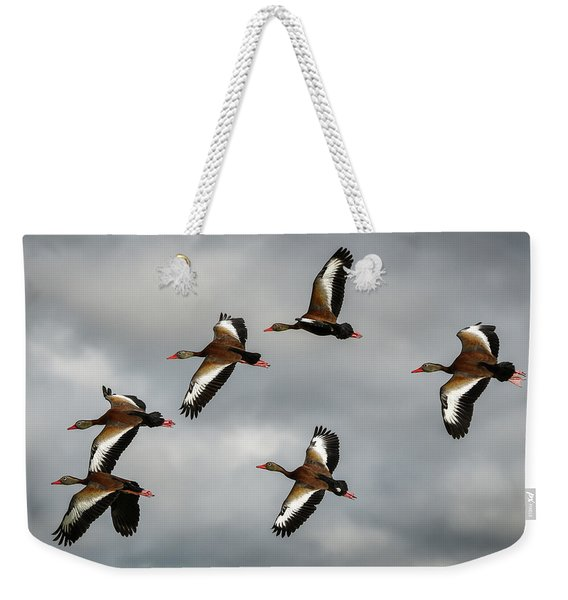Black Bellied Whistling Ducks Weekender Tote Bag