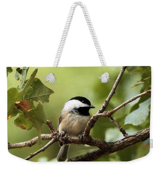 Black Capped Chickadee On Branch Weekender Tote Bag
