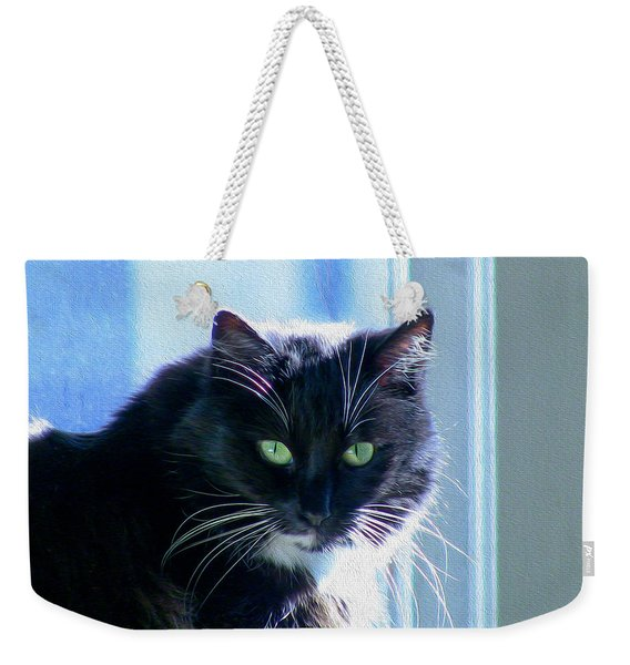 Black Cat In Sun Weekender Tote Bag