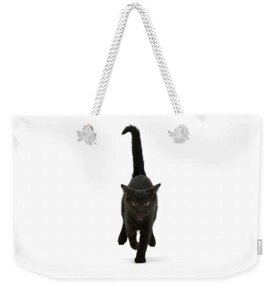 Black Cat On The Run Weekender Tote Bag