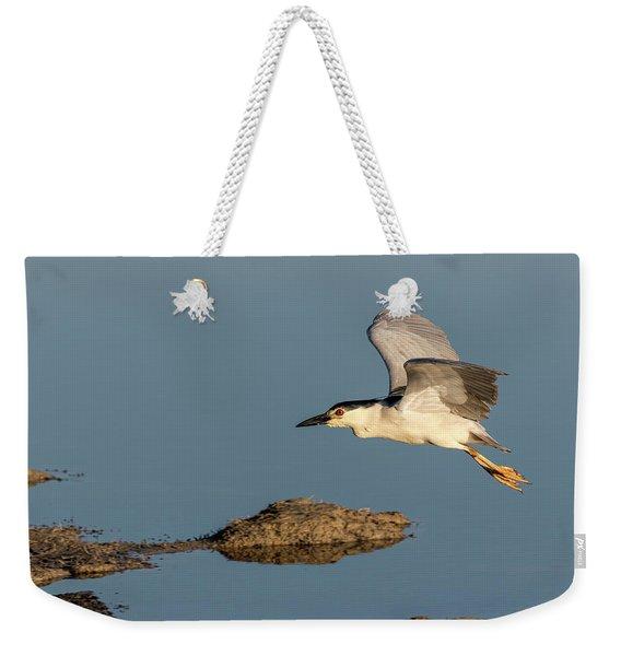 Black-crowned Night Heron 2017-4 Weekender Tote Bag