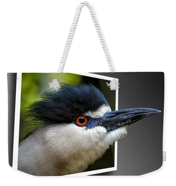 Black Crowned Night Heron Out Of Bounds Weekender Tote Bag