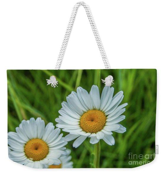 Black-headed Daisy's Weekender Tote Bag