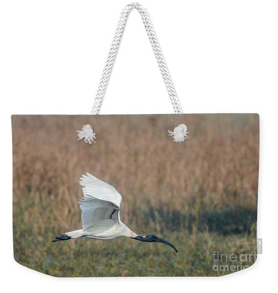 Black-headed Ibis 01 Weekender Tote Bag