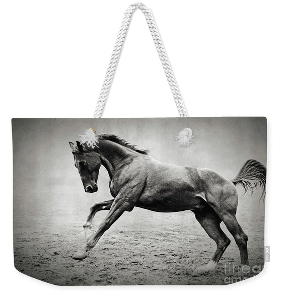 Black Horse In Dust Weekender Tote Bag