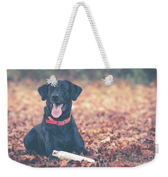 Black Labrador In The Fall Leaves Weekender Tote Bag