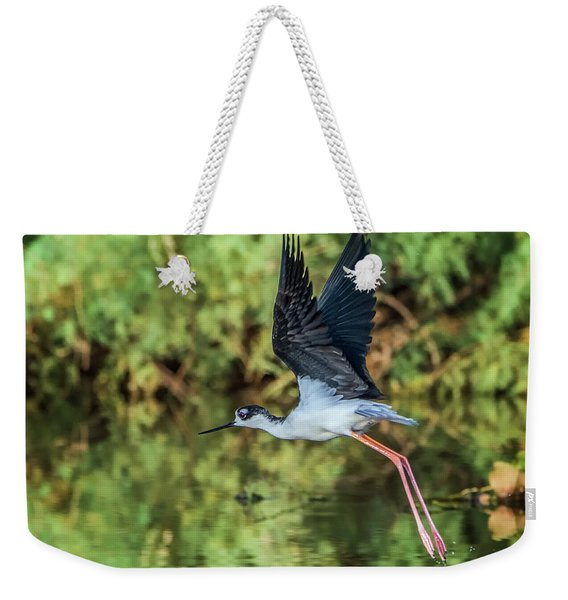Black-necked Stilt 4687-091017-2cr Weekender Tote Bag