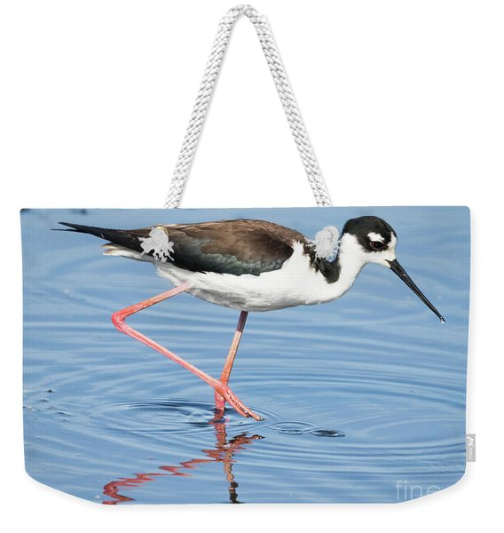 Black-necked Stilt Wading  Weekender Tote Bag