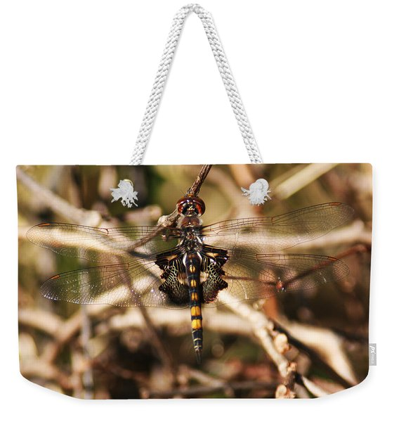 Weekender Tote Bag featuring the photograph Black Saddlebags Dragonfly by William Selander