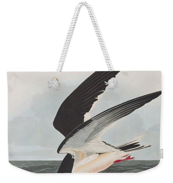 Black Skimmer Or Shearwater Weekender Tote Bag
