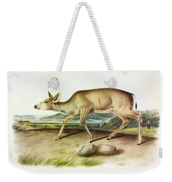 Black-tailed Deer Weekender Tote Bag