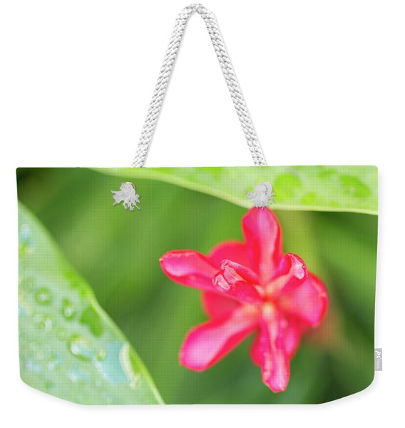 Weekender Tote Bag featuring the photograph Blooming Red Ginger by Charmian Vistaunet