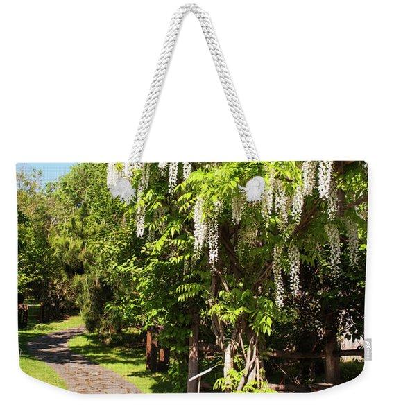 Blooming White Wisteria In Japanese Garden. Vertical Weekender Tote Bag