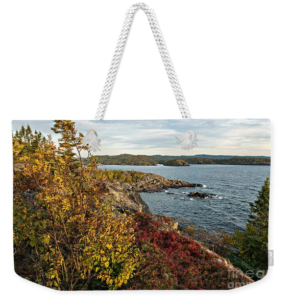 Weekender Tote Bag featuring the photograph Blowing In The Wind by Doug Gibbons