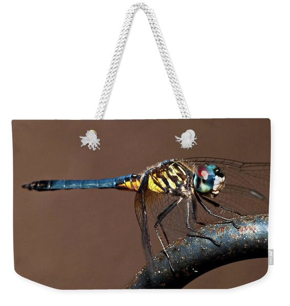 Blue And Gold Dragonfly Weekender Tote Bag