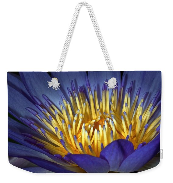 Blue And Yellow Weekender Tote Bag