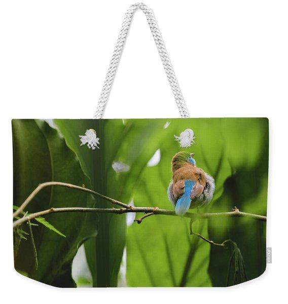 Blue Bird Has An Itch Weekender Tote Bag