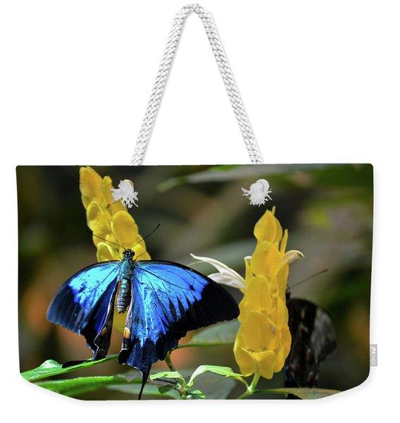 Blue Beauty Butterfly Weekender Tote Bag