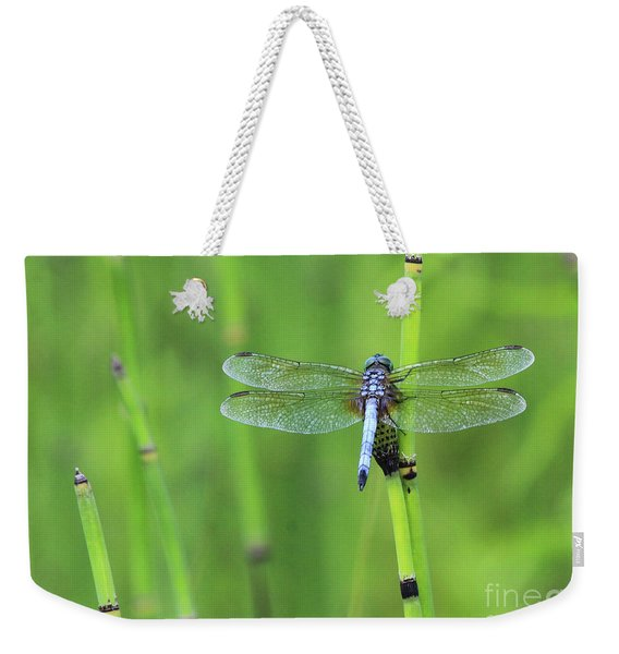 Blue Dasher Weekender Tote Bag