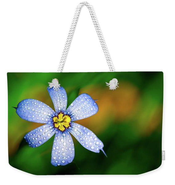 Blue Eyed Grass Flower Covered In Droplets Weekender Tote Bag