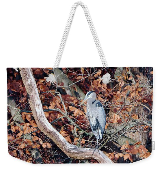 Blue Heron In Tree Weekender Tote Bag