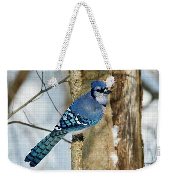 Blue Jay 0291 Weekender Tote Bag