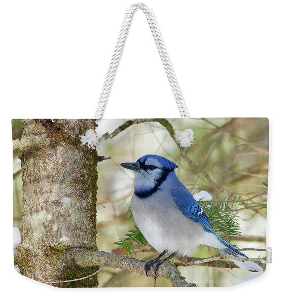 Blue Jay 0307 Weekender Tote Bag