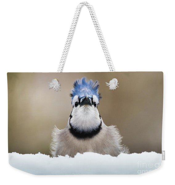 Blue Jay In Snow Weekender Tote Bag