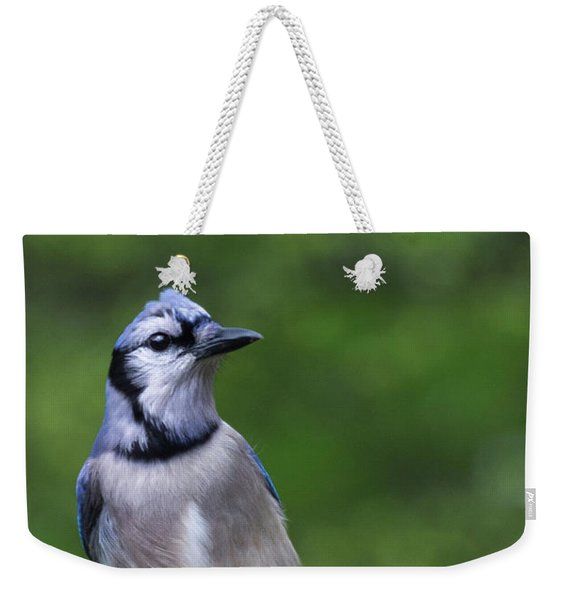 Blue Jay On Alert Weekender Tote Bag