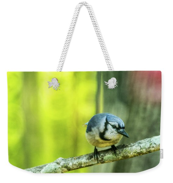 Blue Jay On The Prowl Weekender Tote Bag