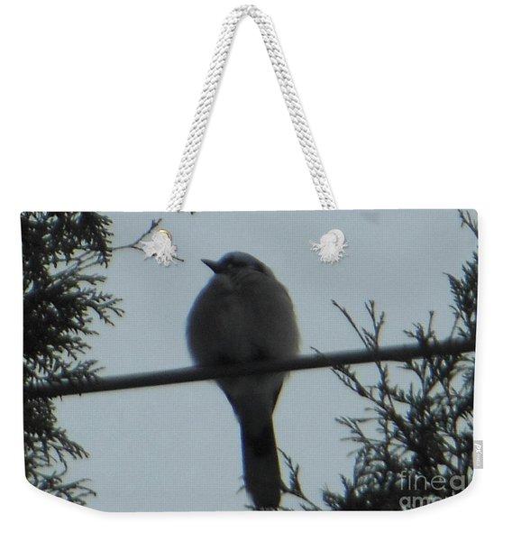 Blue Jay On Wire Weekender Tote Bag