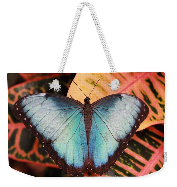 Blue Morpho On Orange Leaf Weekender Tote Bag