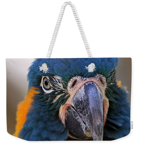 Blue-throated Macaw Close-up Weekender Tote Bag
