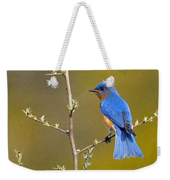 Bluebird Bliss Weekender Tote Bag