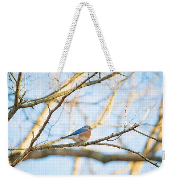 Bluebird In Tree Weekender Tote Bag