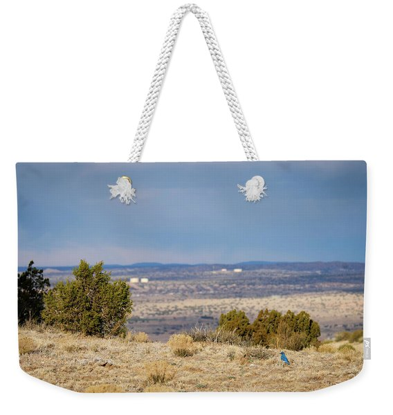 Weekender Tote Bag featuring the photograph Bluebird Of Happiness On The Mesa by Mary Lee Dereske