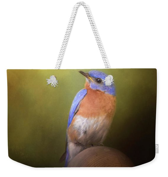 Bluebird On The Nest Pole Weekender Tote Bag