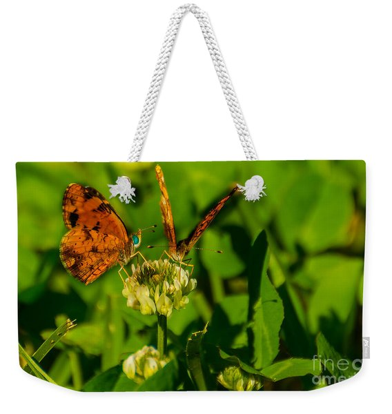Bluehead Butterfly Weekender Tote Bag
