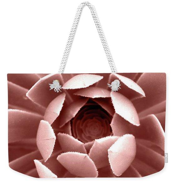 Blush Pink Succulent Plant, Cactus Close Up Weekender Tote Bag