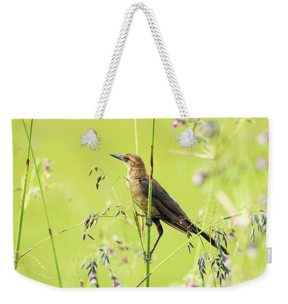 Boat-tailed Grackle Female Weekender Tote Bag