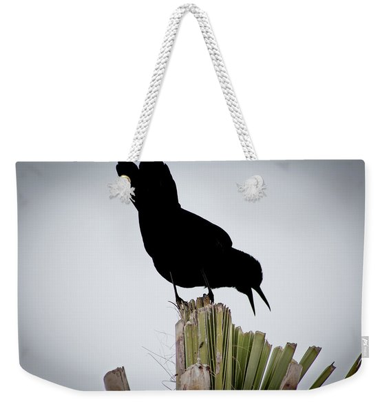 Boat-tailed Grackle Silhuoette Weekender Tote Bag