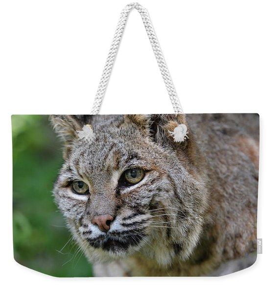 Bobcat In The Trees Weekender Tote Bag
