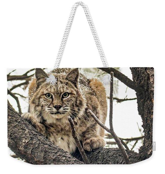Bobcat In Winter Weekender Tote Bag