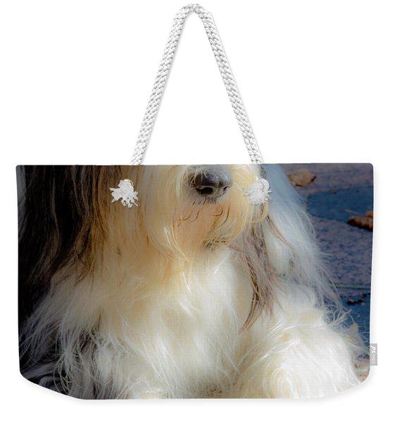 Bobtail's Nap Weekender Tote Bag